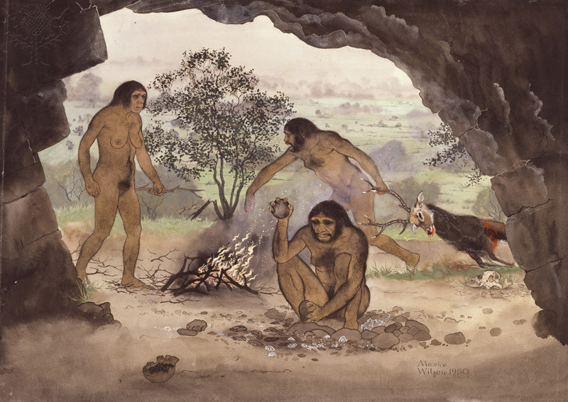 the emergence of bipedal hominids Bipedalism uses twice the energy as mammalian quadrupedalism therefore, one would expect to find a fairly robust theory to explain why hominids opted to use so much energy to get around most evolutionary theories constructed to account for the appearance of bipedalism have serious problems, since.